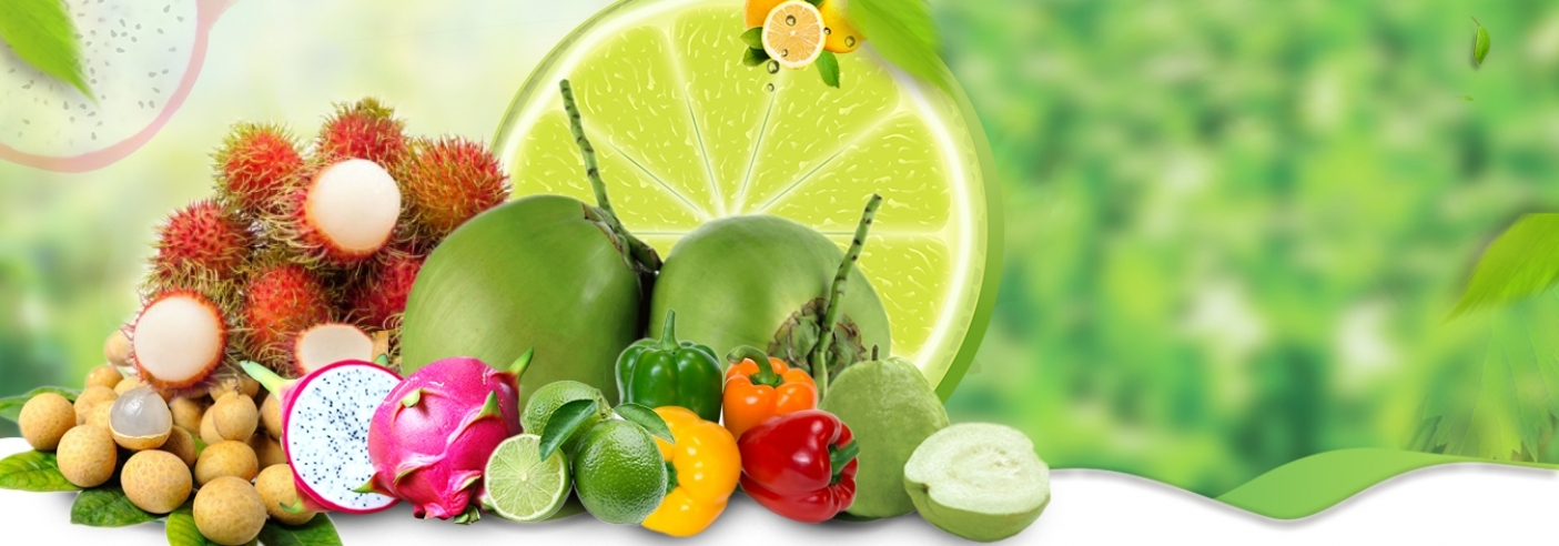 TRUSTED SUPPLIER OF FRESH FRUITS IN VIETNAM